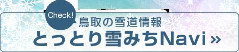 雪 道 ナビ 鳥取